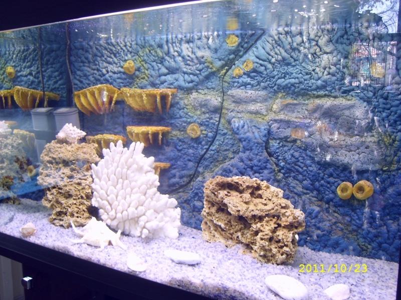 Объемные фоны в аквариум