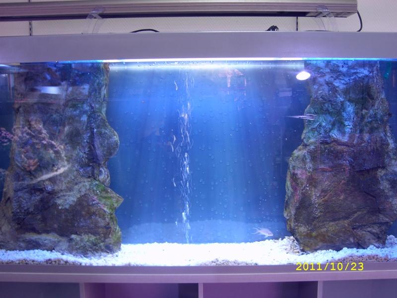 Как сделать скалу в аквариуме