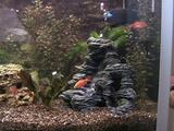 Пескопад в аквариум своими руками