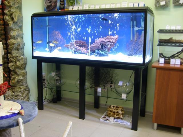 правильная установка аквариума в кварт